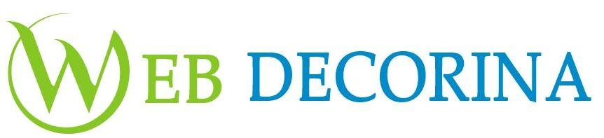 SEO, Software Company Dehradun